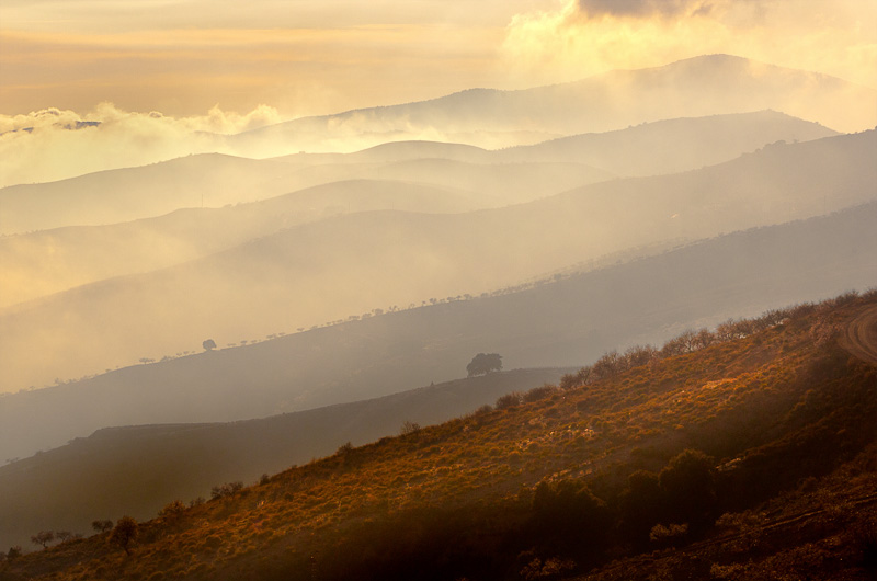 slides/11Sunset_Sierra_Nevada.jpg  11Sunset_Sierra_Nevada